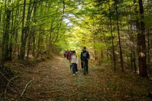 Vycházka za dějinami Videl a Bílého Potoka a krásami podzimních hor
