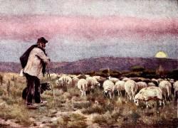 Díl šestatřicátý: Nostalgie za zlatými časy pastevectví v nejvyšších polohách Jeseníků